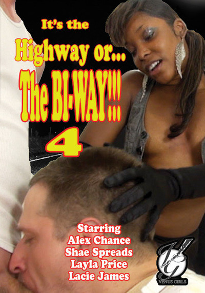 It's The Highway Or The Bi-Way 4